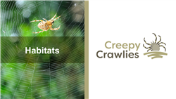 Explore 2 Habitats: teaching slides