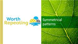 Explore 8 Symmetrical patterns: teaching slides