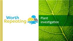 Explore 10 Plant investigation: teaching slides