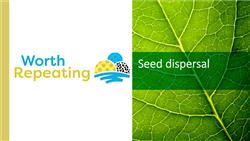 Explore 14 Seed dispersal: teaching slides