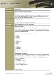 Explore 1 Minibeast hunt: teacher's notes