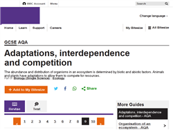 Adaptations, interdependence and competition
